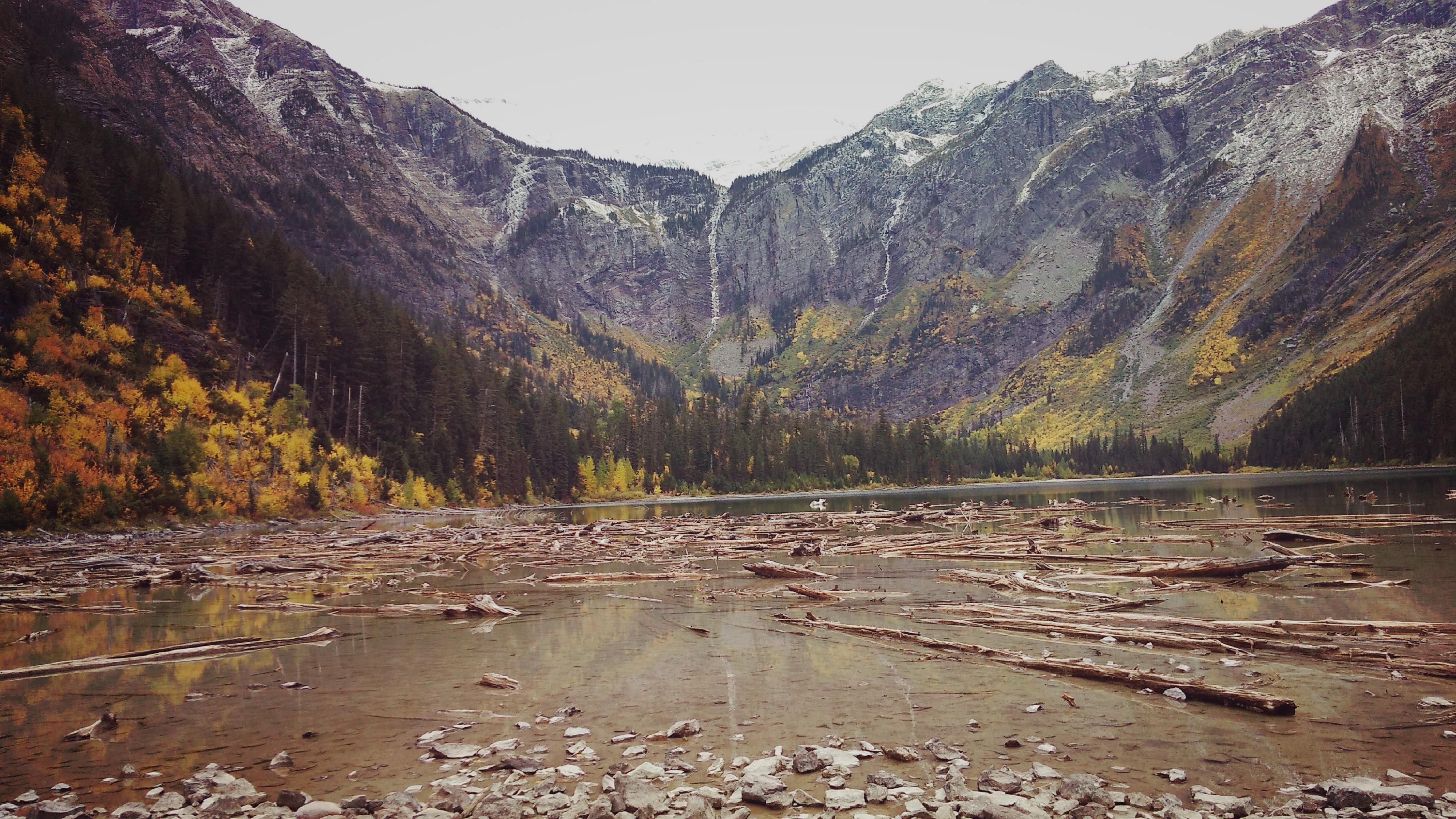 Parque Nacional de los Glaciares. Montana, EE.UU. Avalanche Lake